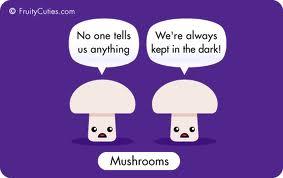 mushroomjoke