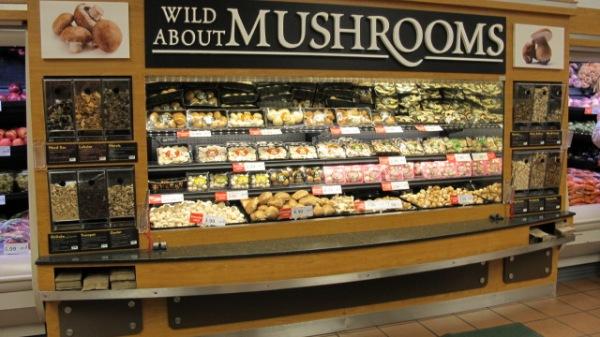 mushrooms 005